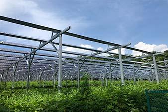 岩手県1.5MWソーラーシェアリング発電所に当社架台が採用